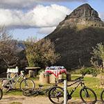 franch bike