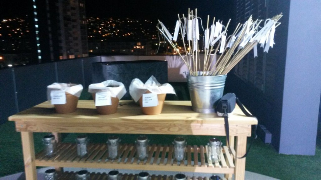 Sticks, marshmallow fish on the Expresso studio roof, to roast over the fire.